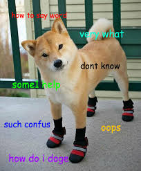 How To Pronounce Doge Meme - page 2 of comments at so squint very dig
