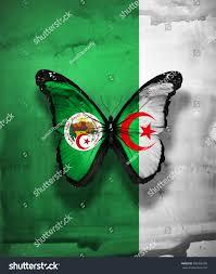 Algerian Flag Algeria Flag Butterfly Coat Arms Isolated Stock Illustration