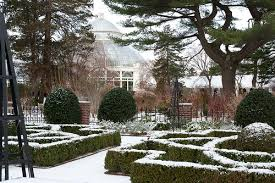 New York Botanical Garden Directions Snow Plant Talk