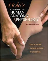 Anatomy And Physiology With Lab Online Combo Hole U0027s Essentials Of Human Anatomy U0026 Physiology With Martin