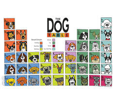 periodic table of dogs dogtablewrap jpg