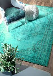 Mint Green Area Rugs Best 25 Turquoise Rug Ideas On Pinterest Teal Rug Turquoise