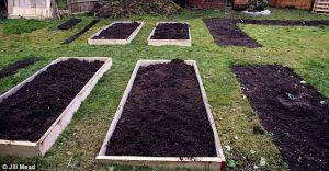 Building Raised Beds 5 Quick U0026 Easy Ways To Build Raised Bed Gardens Garden U0026 Greenhouse