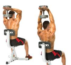 Triceps Bench Dips Exercises To Get Perfectly Shaped Triceps Healthyss
