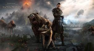 elder scrolls online light armor sets the elder scrolls online morrowind guide to the warden class