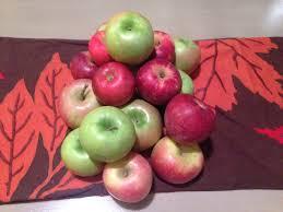 Apple Barn Troutville Va Autumn Adventures Virginia Apple Orchards Wric