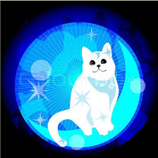 cat and moon stock vector colourbox