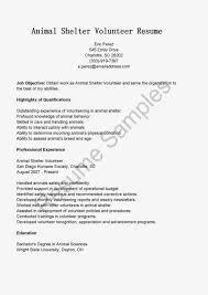 Resume Sample For Volunteer Work by Resume Samples Animal Shelter Volunteer Resume Sample