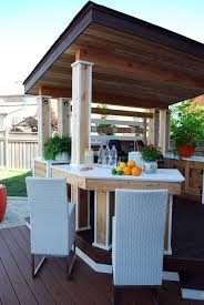 a luxurious outdoor kitchen sheltered by a sloped roof with