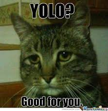 Sad Kitten Meme - coolest sad kitten meme sad cat memes image memes at relatably