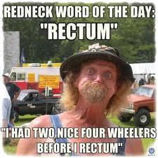 Funny Redneck Memes - 20 most hilarious hillbilly memes sayingimages com