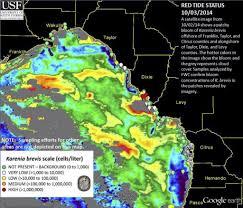 Map Of Sanibel Island Florida by Sanibel U0026 Captiva Islands Red Tide Report 10 4 14 No Red Tide