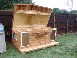 Outdoor Kennel Ideas by 1013 Best Dog Houses Large Dogs Images On Pinterest Your Dog
