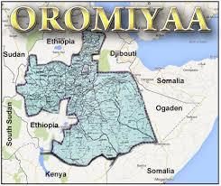 Oromo Flag Home Oromo Liberation Front