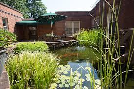 assisted living amenities charlottesville va martha jefferson