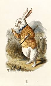 adventures of rabbit the white rabbit from s adventures in hagar