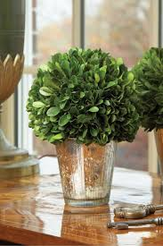 Mercury Glass Home Decor 183 Best Mercury Glass Images On Pinterest Marriage Flowers And