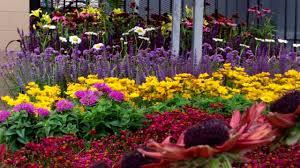 preplanned for flower garden ideas landscaping u0026 backyards ideas