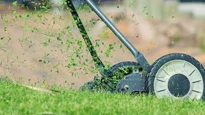 Eliminate Mosquitoes In Backyard by How To Get Rid Of Mosquitoes In Yard Insect Cop