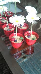 Ladybug Baby Shower Centerpieces by 24 Best Ladybug Baby Shower Images On Pinterest Ladybug Baby