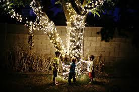 tree lights darby elizabeth photography arizona photographer