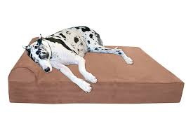 dog beds u0026 houses big barker thick pillow top orthopedic dog bed