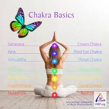 sacral chakra location chakra basics learn what chakras are and their energetic properties