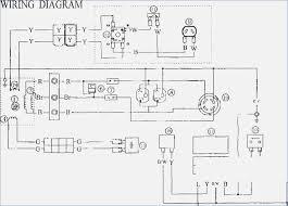 wiring diagram generator cathology info