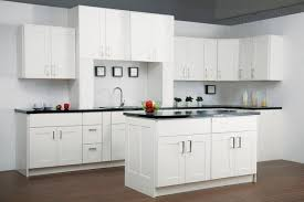 findley and myers cabinets reviews findley myers malibu white kitchen cabinets modern detroit