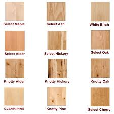 What Is The Best Finish For Kitchen Cabinets Kitchen Outstanding Best Cabinet Doors Replacement Tips And Ideas
