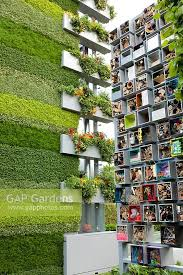 gap gardens green and vertical feature walls in modern garden