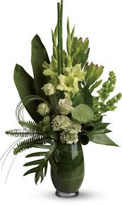 best 25 orchid arrangements ideas on pinterest orchid flower