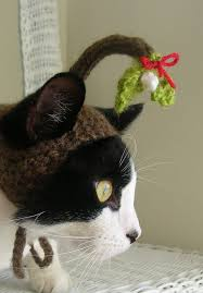 mistletoe hat who can resist stealing a when your pet is wearing this