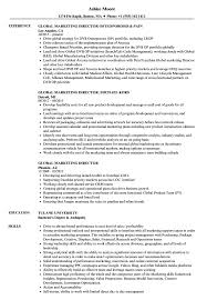 director level resume samples director of finance resume example
