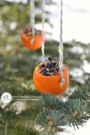 orange birdseed ornaments citrus bird feeders