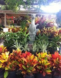 Houston Urban Gardeners - your to do list for september gardening in houston