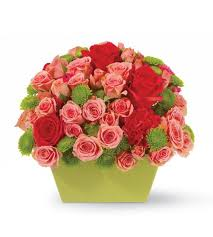 Local Flower Delivery Round Rock Tx Florist Local Flower Delivery In Round Rock By