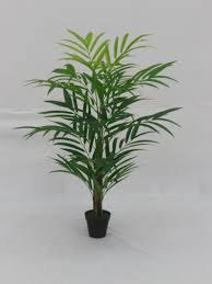 artificial trees and plants that can be rented or purchased