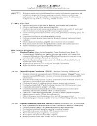 Resume Sle After School Program software developer resume sle java architect java architect