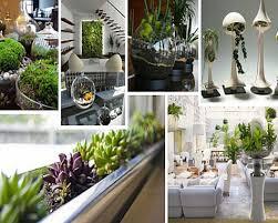 interior decorating style house plants house interior