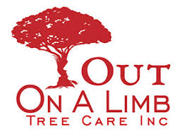 out on a limb tree care inc