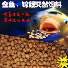 fish tank feeding picture more detailed picture about koi food