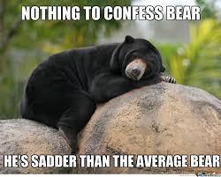 Funny Bear Meme - funny bear memes meinafrikanischemangotabletten