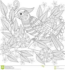 100 tropical bird coloring pages tweety bird coloring pages