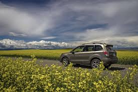 2017 subaru forester off road in photos 2017 subaru forester inside and out and off road the