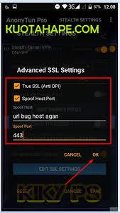 setting anonytun pro dengan kuota fb dan bbm mengubah kuota fb bbm telkomsel jadi kuota flash reguler