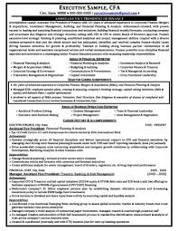Examples Of Successful Resumes by Successful Resume Examples