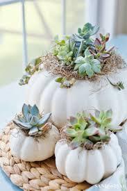 Succulent Planter Diy Succulent Pumpkin Centerpiece Sand And Sisal