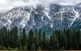 Apple Yosemite Wallpaper Photographer   thank apple s os x yosemite announcement for this collection of