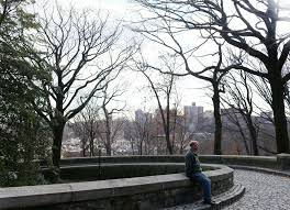 36 hours in upper manhattan the new york times